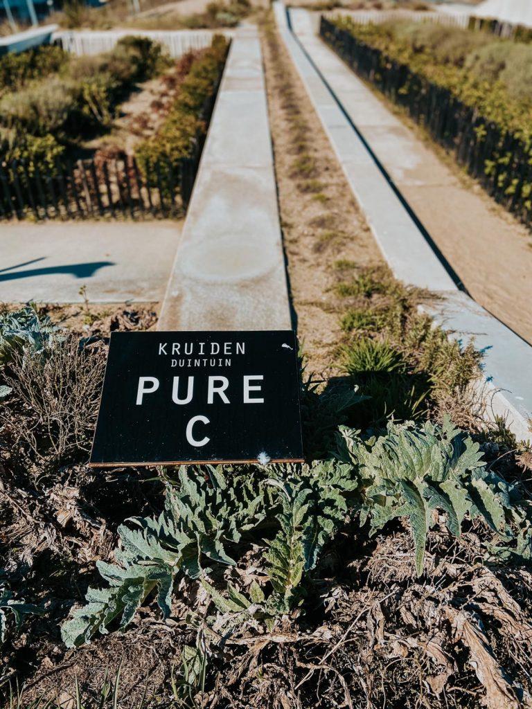 Strandhotel Cadzand-Bad Sergio Herman Pure C Air Republic Blueness Cadzand luxury hotel beach sea view piet boon